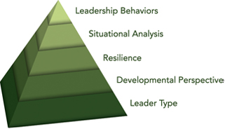 5 Elements of Innovative Leadership