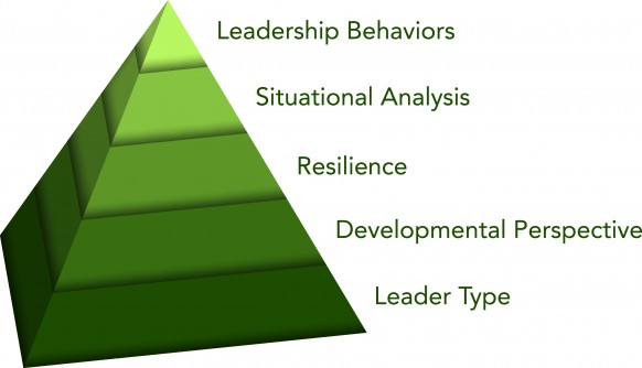 Innovative Leadership Framework